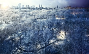 Stephen Wilkes, Central Park