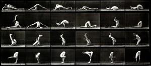 Gymnast, Eadweard Muybridge. Image courtesy Laurence Miller Gallery