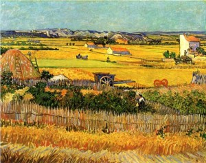 Vincent Van Gogh The Harvest at La Crau, 1888. Van Gogh Museum,