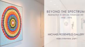 Michael Rosenfeld Gallery, Beyond the Spectrum, part I