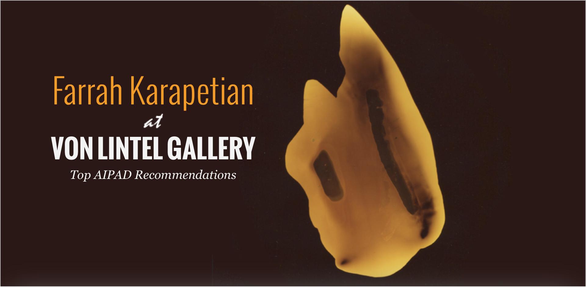 Farrah Karapetian at Von Lintel Gallery AIPAD 2014
