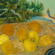 Vincent van Gogh, Still Life of Oranges and Lemons with Blue Gloves_cropped 1989
