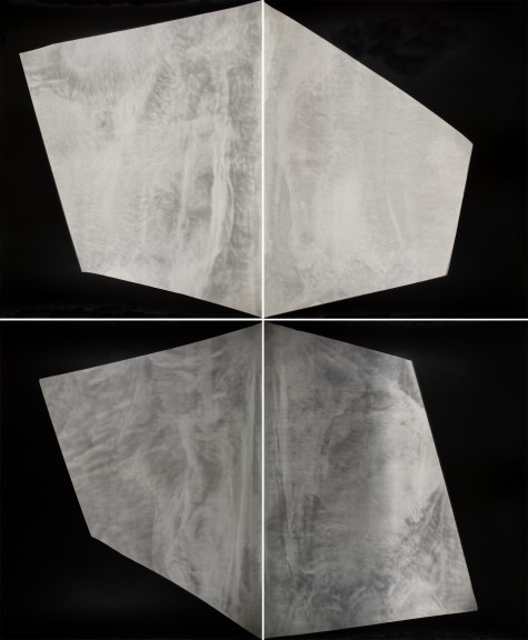 Alison Rossiter From the series Fours Haloid Military, (#11) expired October 1957, processed 2015 Four Gelatin Silver Prints Unique © Alison Rossiter, Courtesy Yossi Milo Gallery, New York