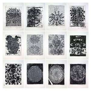 Terry Winters, Atmospheres, 2014. Set of 12 silkscreens