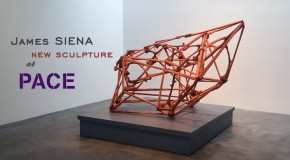 James Siena, New Sculpture at Pace