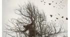 Kahn & Selesnick, The Raven Tree, Archival inkjet print 10x10